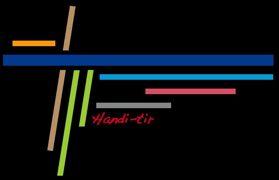 LogoHandiTir.png